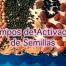 Tiempo de activación de semillas
